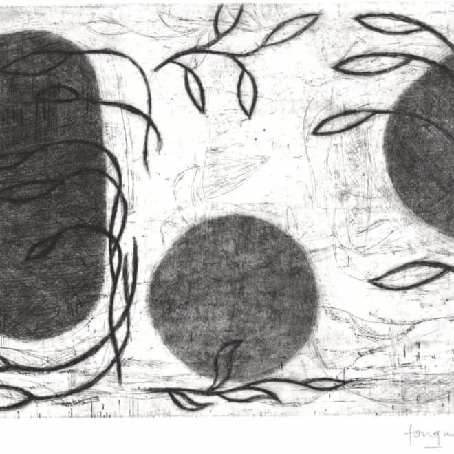Cana 2, 23.06.13, pointe sèche sur zinc sur BFK Rives, plaque 20 x 30 cm